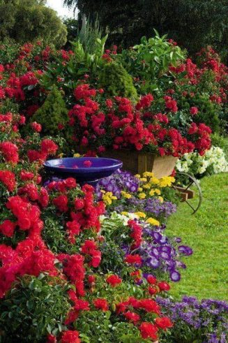 Mε τόσο εντυπωσιακά χρώματα στον κόσμο,... 1