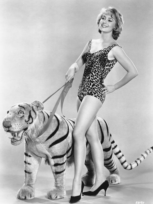 Shirley Jones and a tiger. How brave of her.... 1