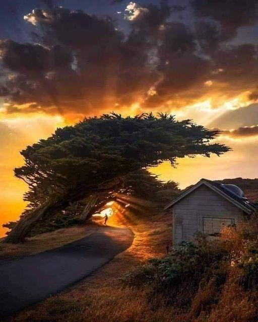 Wonder of Nature... 1