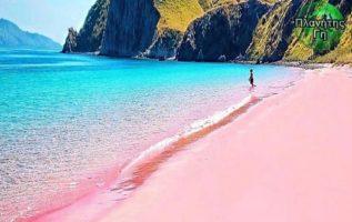 Η ροζ παραλία του Komodo Ινδονησία , είναι μία από τις επτά ροζ παραλίες άμμου σ...