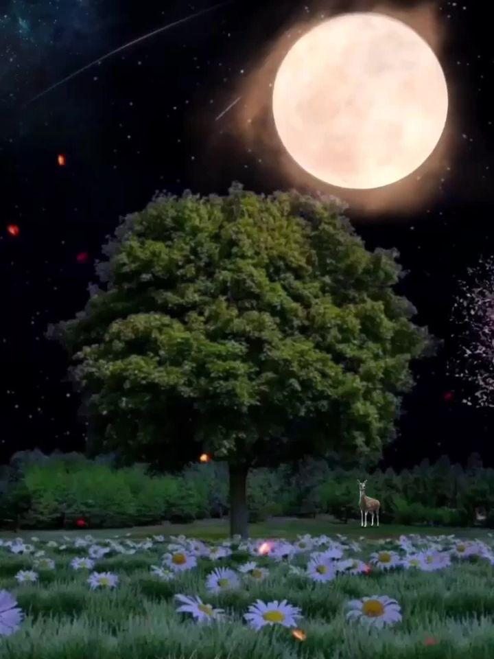 Καληνύχτα με αγάπη... 1