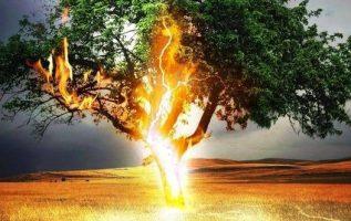 Κεραυνός χτυπάει δέντρο...