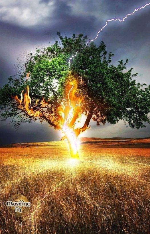 Κεραυνός χτυπάει δέντρο... 1