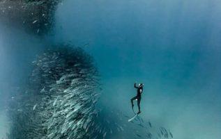 Ο William Winrame, ένας εξερευνητής ωκεανών  τράβηξε την απίστευτη στιγμή που έν...