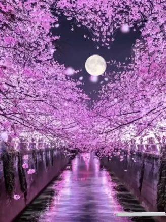 Όμορφη γαλήνια και ήρεμη να είναι η νύχτα μας...