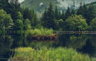 Beautiful nature, Scotland...