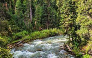 Gallatin River in Montana...