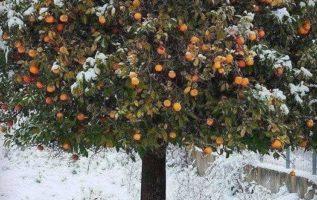 Winter in #Greece  !!....