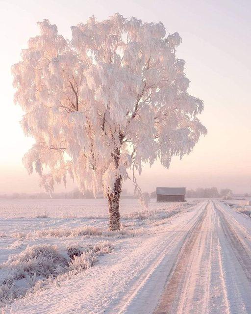 Χειμώνας στη Φινλανδία.... 1