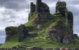 Castle Coeffin, Scotland   @ziggy99x/IG...