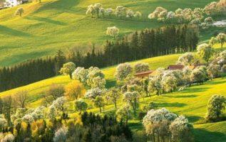 The Green hills in Austria...