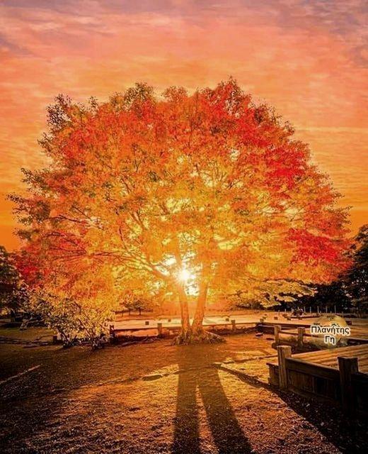 Ένα Φθινοπωρινό μεθυστικό ηλιοβασίλεμα... 1