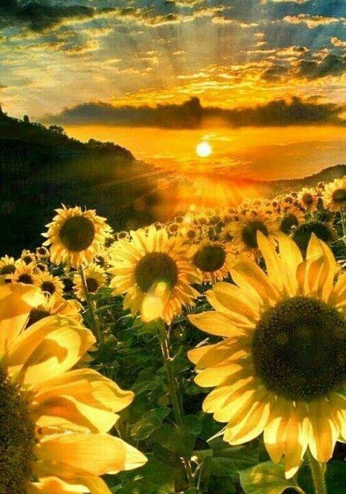 Όμορφα πράγματα συμβαίνουν σε εκείνους που πιστεύουν. Ακόμα πιο όμορφα πράγματα ... 1