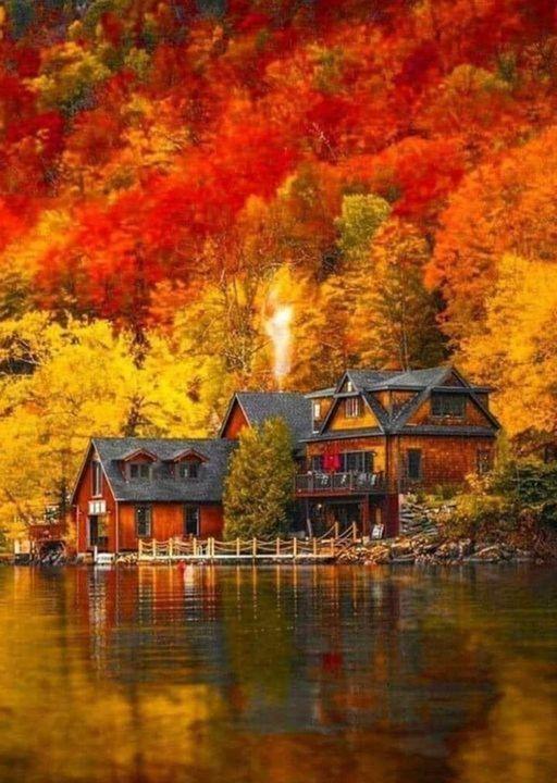 Αυτοί που αναλογίζονται την ομορφιά της φύσης... 1