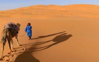 Γνωρίζετε ότι, στη Σαχάρα κατά τη διάρκεια του καλοκαιριού, ενώ τη μέρα η θερμοκ...