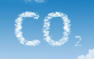 Γνωρίζετε ότι, τα φυτά αποκτούν τη μάζα τους κυρίως από την απορρόφηση του CO2 τ...