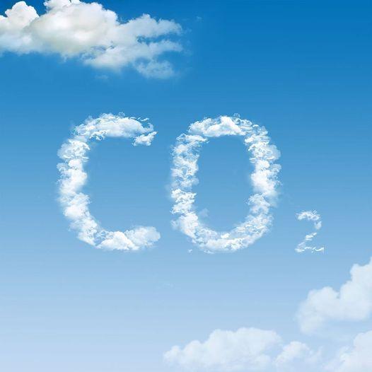 Γνωρίζετε ότι, τα φυτά αποκτούν τη μάζα τους κυρίως από την απορρόφηση του CO2 τ... 1