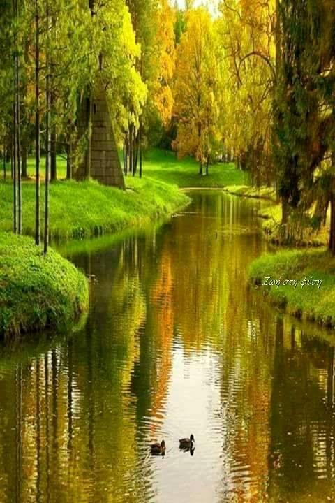 Μόνο η φύση μπορεί να προσφέρει τόση γαλήνη.... 1
