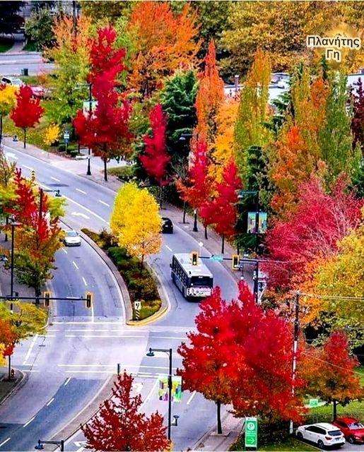 Πανέμορφα χρώματα... 1