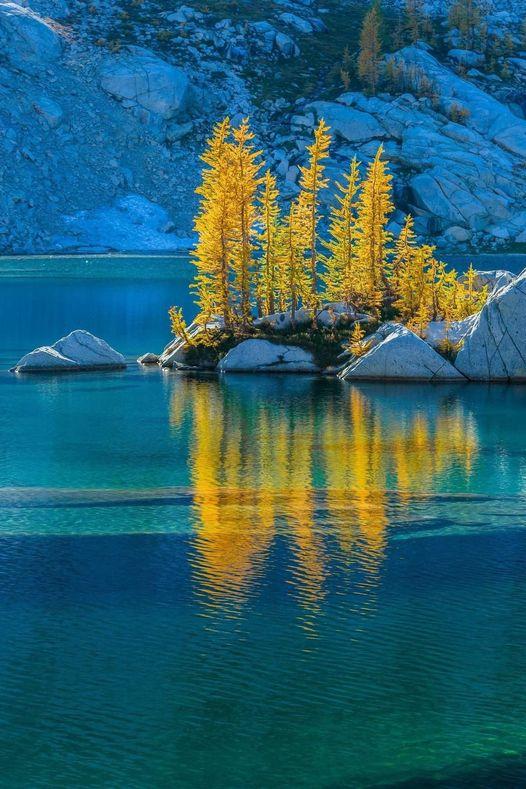 Crystal Lake - OWNF - Backlit autumn Alpine Larch : Lee Rentz/Flickr... 1