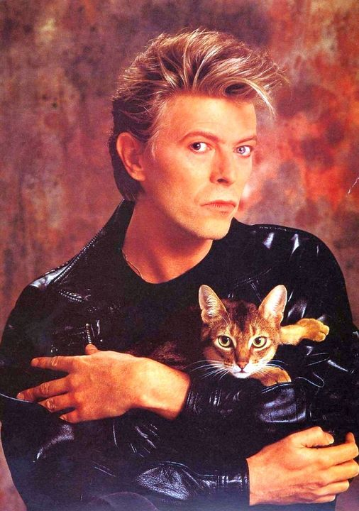 David Bowie.... 1